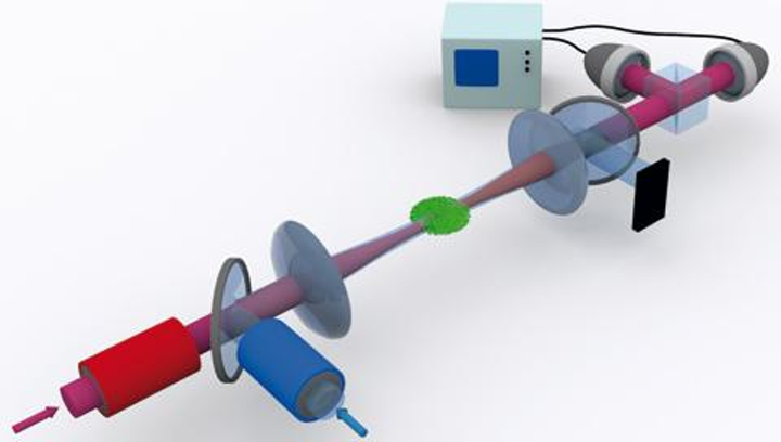 Illustration of the experimental setup for a single-photon quantum switch shows an atomic cloud (green) held in an optical dipole trap and irradiated with light pulses from a control (blue) and a signal beam (red). (Image credit: MPQ, Quantum Dynamics Division)
