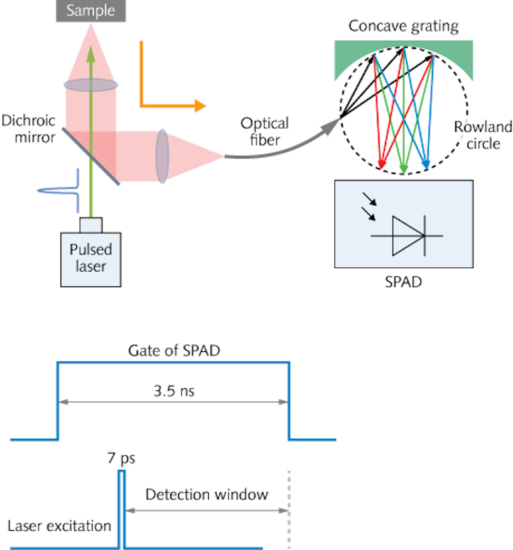 Raman Spectrometers: Low-cost Raman spectrometer uses