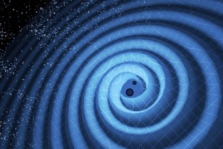 This illustration shows the merger of two black holes and the gravitational waves that ripple outward as the black holes spiral toward each other. The black holes--that represent those detected by LIGO on December 26, 2015--were 14 and 8 times the mass of the sun, until they merged, forming a single black hole 21 times the mass of the sun. In reality, the area near the black holes would appear highly warped, and the gravitational waves would be too small to see. (Image credit: T. Pyle/LIGO)