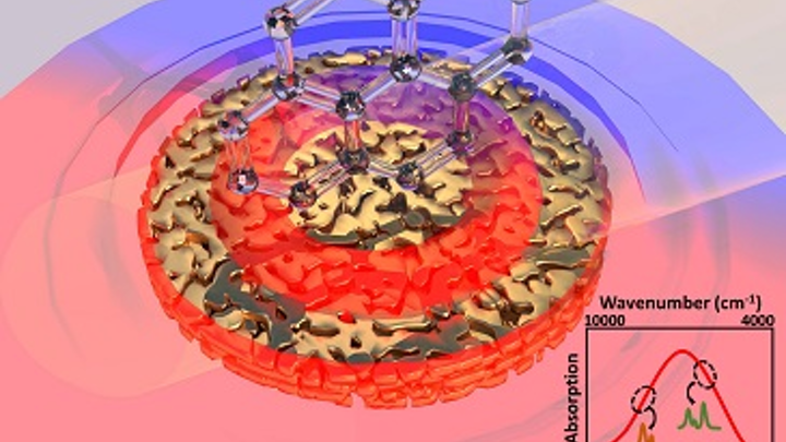Nanoporous gold disks could sense hydrocarbons for downhole fluid analysis