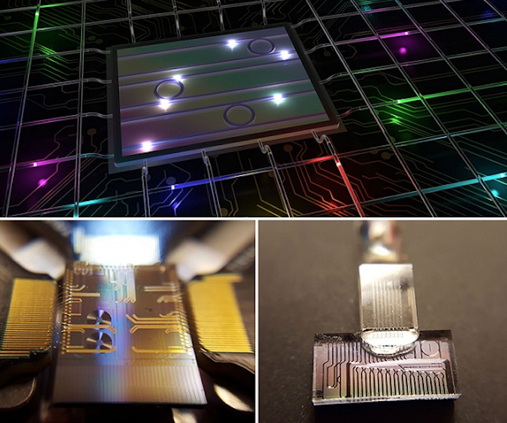 Color-entangled photon states from a photonic chip are manipulated and transmitted via telecommunications systems (top). The photonic chip is used to generate color-entangled photon pairs (lower left). The same photonic chip is connected to optical fiber, allowing the quantum state manipulation with standard telecommunications components (lower right). (Image credit: INRS University/Michael Kues)