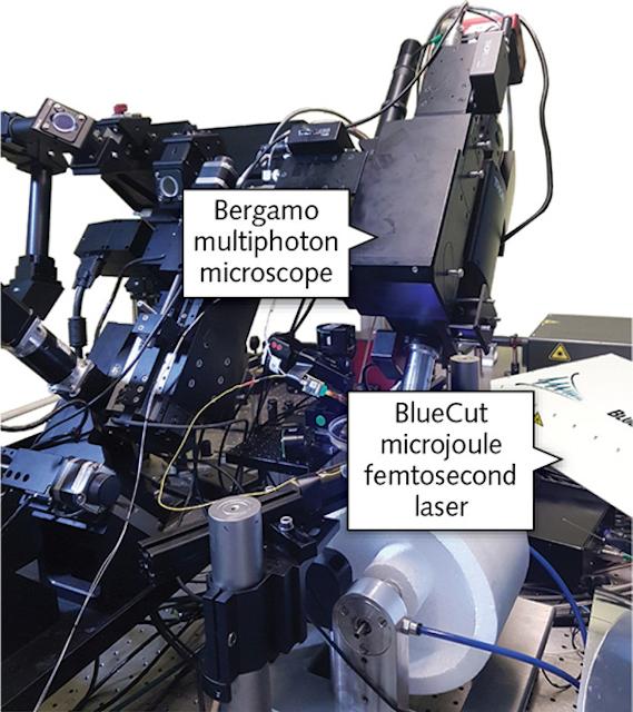 Neuroscience/Optogenetics: All-optical, high-precision