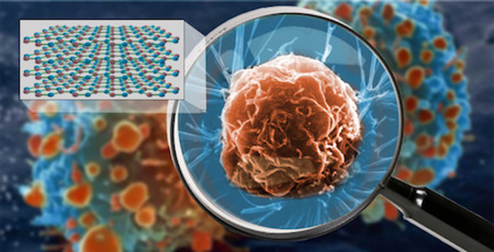 Hyperlens crystal is capable of viewing living cells at nanometer scale