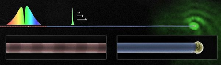 Tailored nanowires spectrally select and guide light for all-optical computing