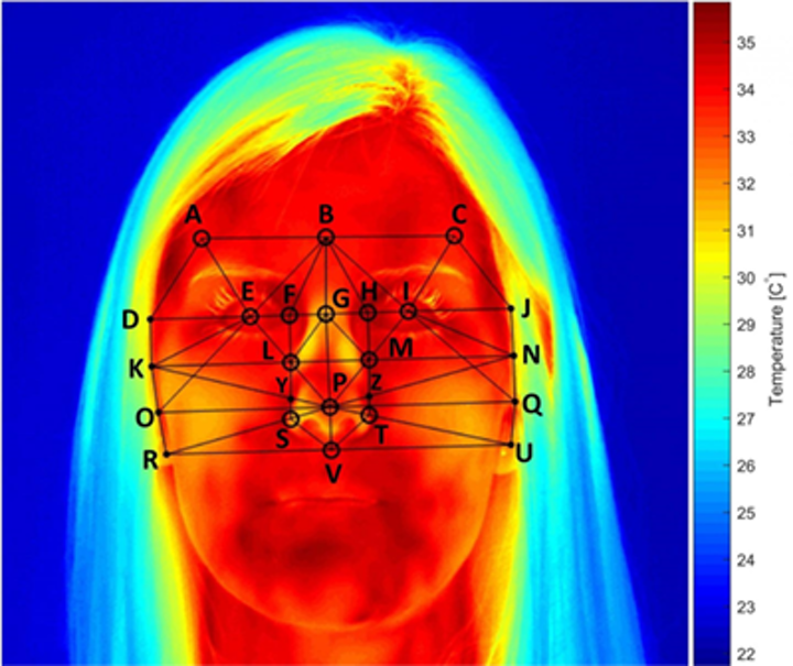 Among the markers for disease diagnosis or physical understanding using thermal imaging, facial temperatures, which can be measured using a thermal camera, are strongly correlated to mental workload. The effect is most pronounced around the nose. Facial temperatures are reduced as people perform tasks of increasing difficulty. (Image credit: University of Nottingham)