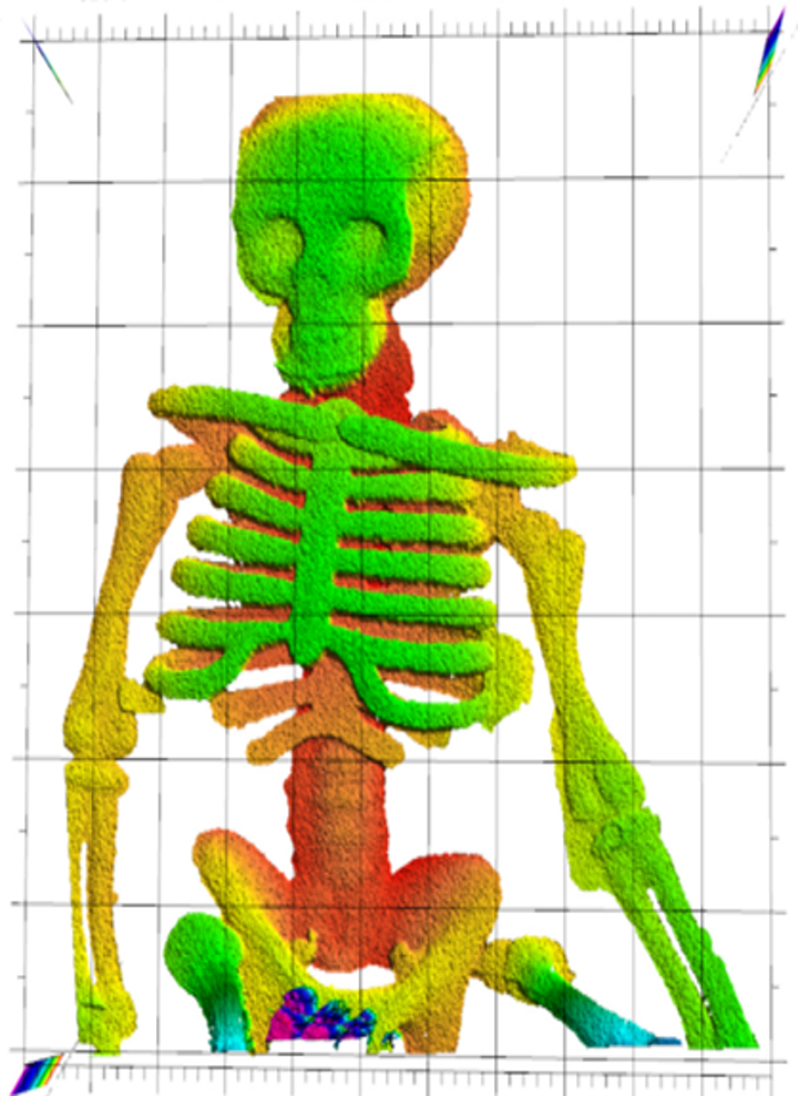 NIST researchers demonstrated that laser ranging could 'see through flames' to make this image of a plastic skeleton toy. Laser ranging captured the plastic skeleton's complex 3D shape, with depth indicated by false color. The plastic did not melt or deform in the fire. (Image credit: Baumann/NIST)