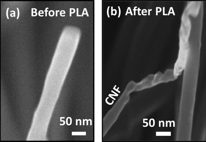 High-resolution scanning electron microscopy images show (a) a carbon nanofiber (CNF) before pulsed laser annealing (PLA) and (b) a CNF after PLA revealing the conversion of carbon nanofibers into diamond nanofibers. (Image credit: NC State)