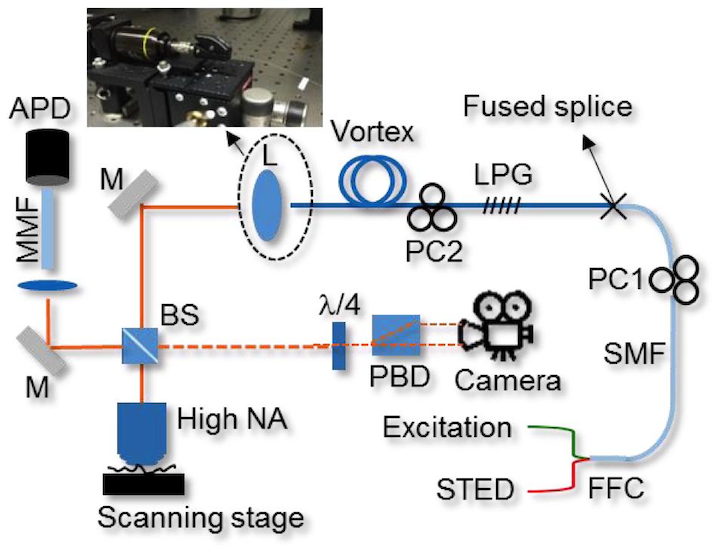 Content Dam Lfw En Articles Print Volume 52 Issue 07 Issue 7 Superresolution Microscopy All Fiber Illumination Brings Superior Stability To Sted Leftcolumn Article Thumbnailimage File