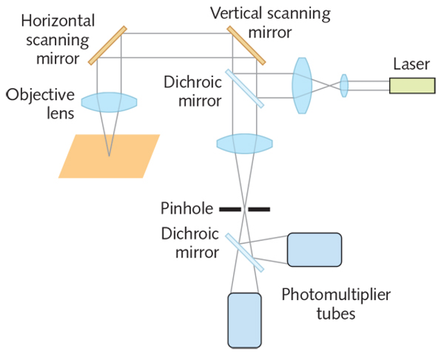 Photomultiplier tubes are at the forefront of low-light detection