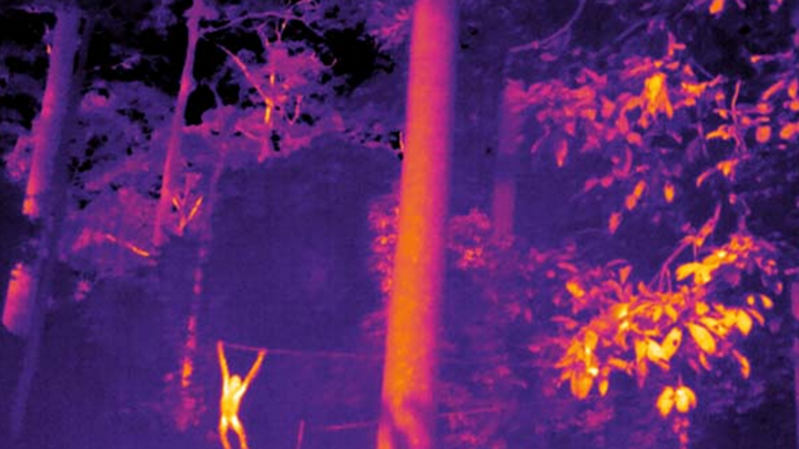 Content Dam Lfw En Articles 2019 04 Thermal Imaging Finds New Applications In Animal Population Monitoring Leftcolumn Article Thumbnailimage File