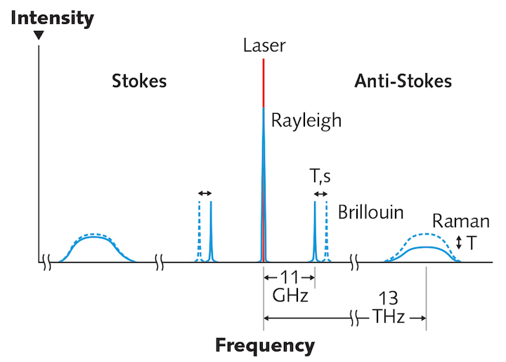 FIGURE 1. A schematic representation details the spectral components of scattered light within an optical fiber.