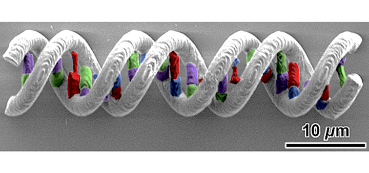 This DNA-type structure was laser-printed from five different materials.